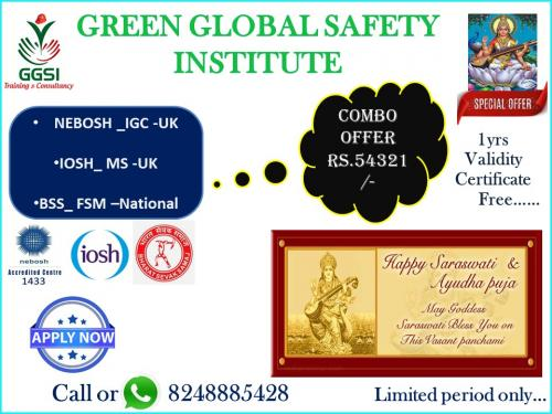 GREEN GLOBAL SAFETY INSTITUTE-broucher